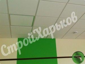 Потолок Армстронг в Харькове