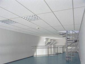 Потолок 600х1200